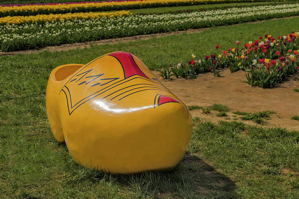 Photograph - Dutch Clog And Tulip Field by Susan Candelario
