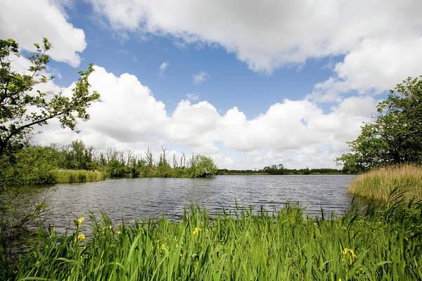 Wall Art - Photograph - Dutch Lakeside by Track5