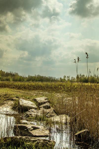 Photograph - Dutch Landscape. by Anjo Ten Kate