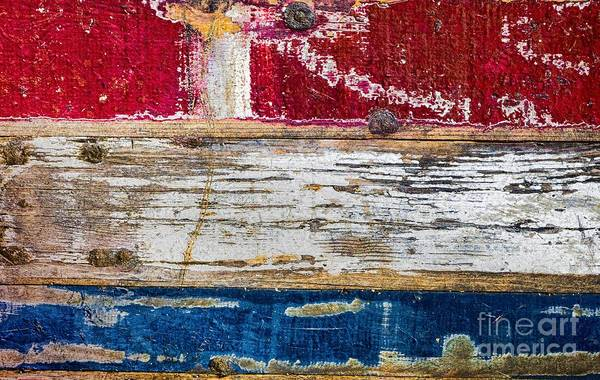 Wall Art - Photograph - Dutch Wood by DiFigiano Photography