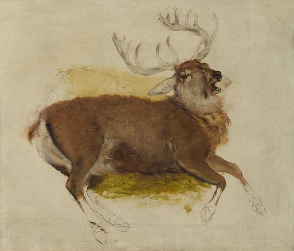 Landseer Painting - Dying Stag by Edwin Landseer