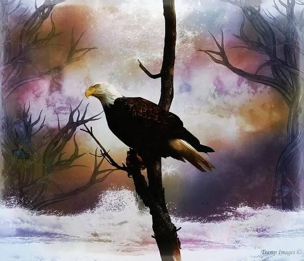 Digital Art - Eagle Fantasy by Wesley Nesbitt