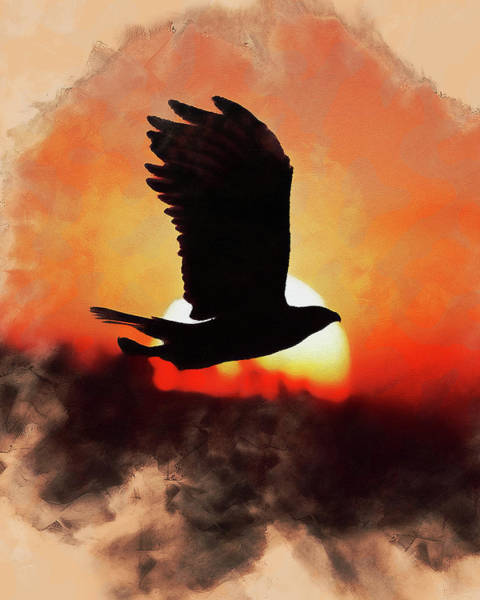 Painting - Eagle Fly - 02  by Andrea Mazzocchetti