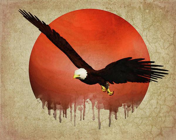 Digital Art - Eagle Flying by Jan Keteleer