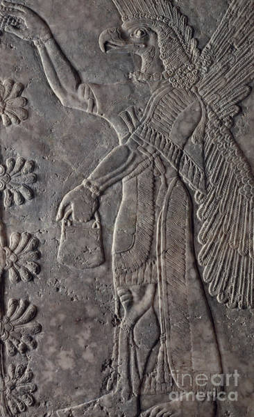 Wall Art - Relief - Eagle-headed Winged Figure, 875-60 Bc by Assyrian School