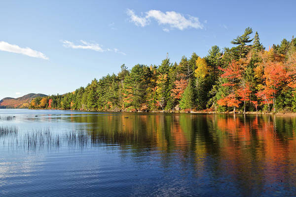 Eagle Photograph - Eagle Lake Autumn Morning, Acadia by Picturelake