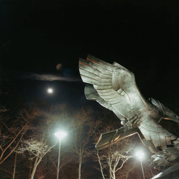 Battery Park Wall Art - Photograph - Eagle Statue by Silvia Otte