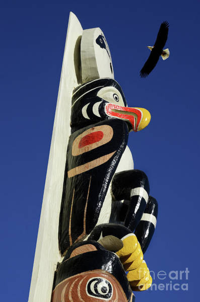 Wall Art - Photograph - Eagle Totem by Bob Christopher