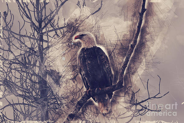 Photograph - Eagles At Higgens Point by Matthew Nelson