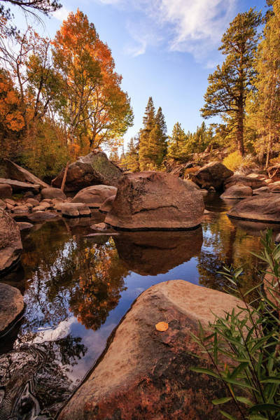 Wall Art - Photograph - Early Autumn Carson River Reflections by Mike Herron