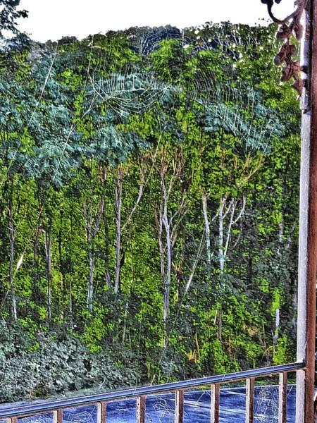 Digital Art - Early Morn Windblown Web by Vincent Green