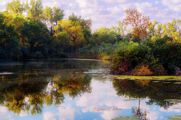Photograph - Early Morning In The Wetlands by Edward Peterson