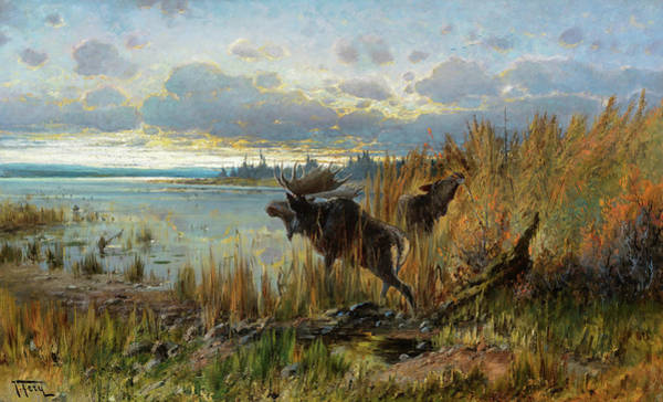 Painting - Early Morning Moose, Northern Montana by John Fery