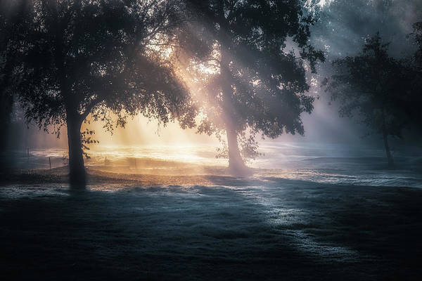 Photograph - Early Morning Sunrays No 2 by Chris Fletcher