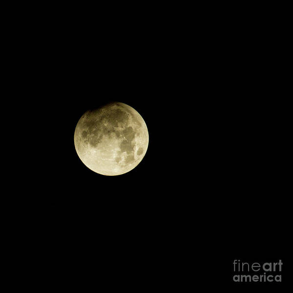 Perigee Moon Photograph - Early Stage Of Super Moon Eclipse by Robert Bales