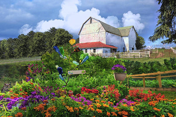 Wall Art - Photograph - Early Summer Garden by Debra and Dave Vanderlaan
