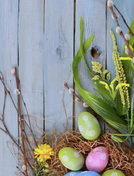 Photograph - Easter Fun by Perry Correll