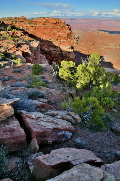 Photograph - Eastern Canyonlands And La Sal Mountains From Grand View Points by Ray Mathis