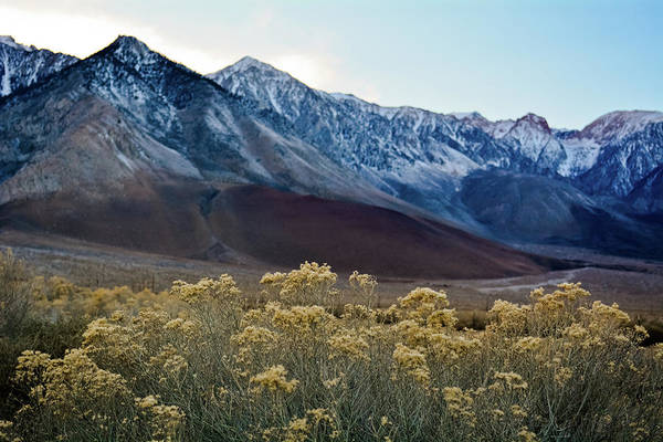 Photograph - Eastern Sierra Magic Hour by Kyle Hanson