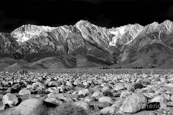 Wall Art - Photograph - Eastern Sierra Nevada Morning Monochrome by Douglas Taylor