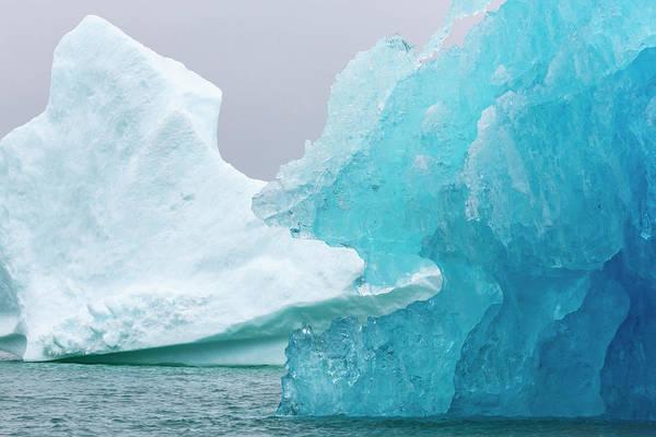 Photograph - Eating The Iceberg by Raelene Goddard