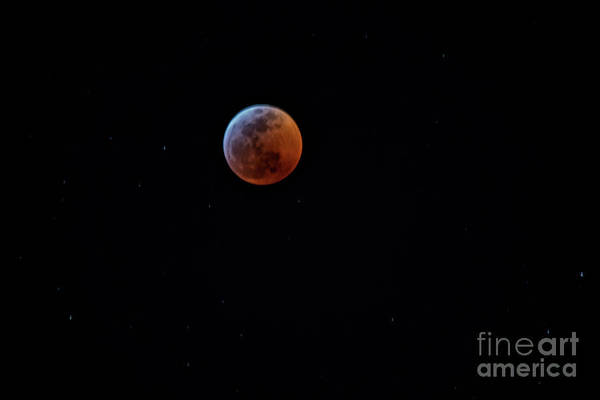Photograph - Eclipse by Mark Jackson