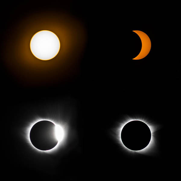 Eclipse Phases Art Print by Christine Buckley