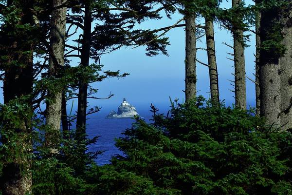 Photograph - Ecola State Park by Walt Sterneman
