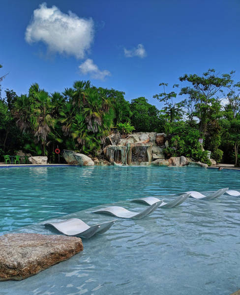 Photograph - Ecopark Pool In Belize by Portia Olaughlin