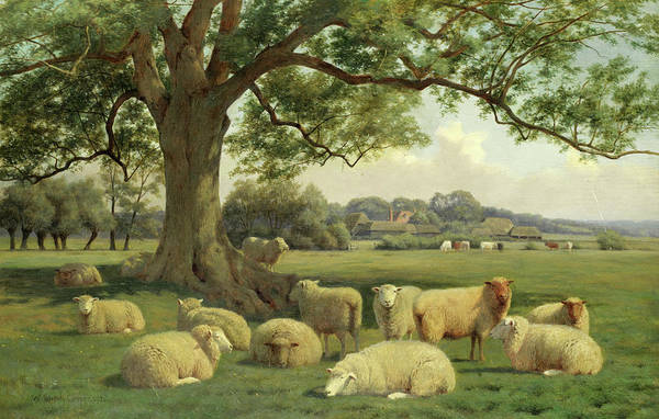 Wall Art - Painting - Eddington Meadows, Kent by William Sidney Cooper