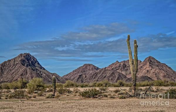 Wall Art - Photograph - Edge Of Desert by Robert Bales