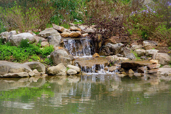 Photograph - Edith Carrier Arboretum Waterfall by Allen Nice-Webb