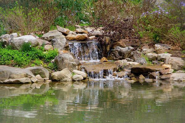 Photograph - Edith Carrier Arboretum Waterfall by Allen Nice-Webb