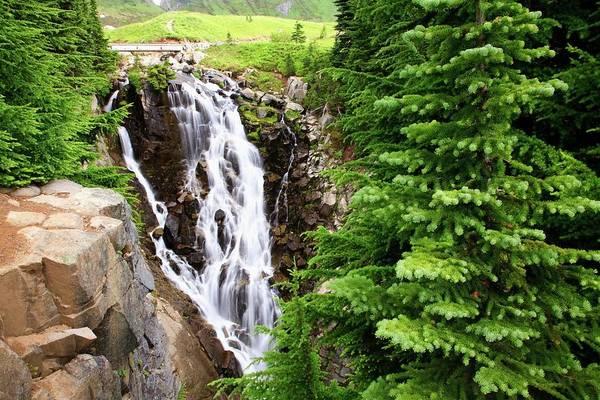 Edith Creek Falls In Mt. Rainier Art Print