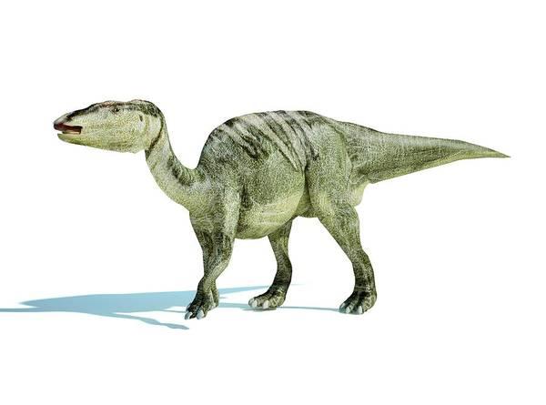 Prehistoric Era Wall Art - Digital Art - Edmontosaurus Dinosaur, Artwork by Leonello Calvetti