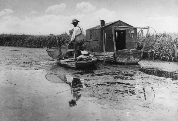 Sport Fishing Photograph - Eel Fishing by Peter Henry Emerson