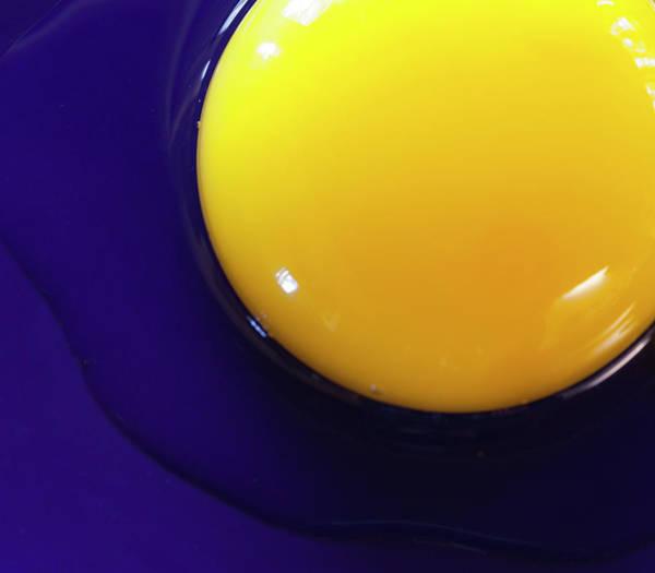 Yolk Wall Art - Photograph - Egg Yolk by Photo By John Rice