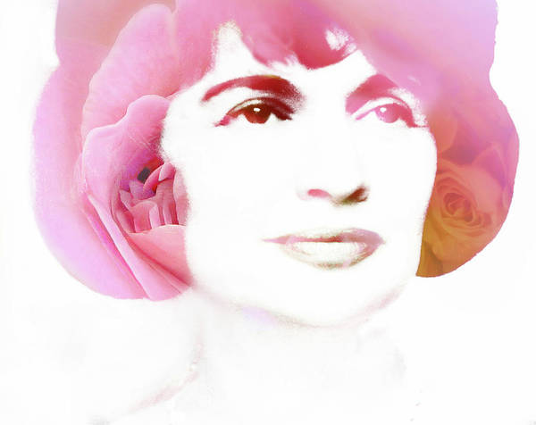 Wall Art - Photograph - Pink Lady by Jessica Jenney