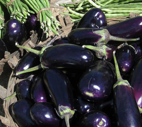 Eggplants   For Sale In In Chatikona  Art Print