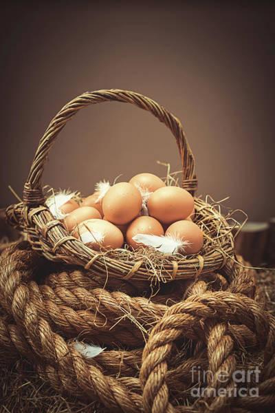 Wall Art - Photograph - Eggs by Amanda Elwell