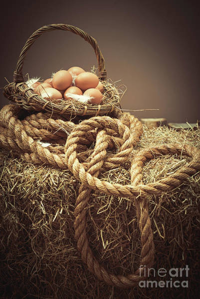 Wall Art - Photograph - Eggs In Basket by Amanda Elwell