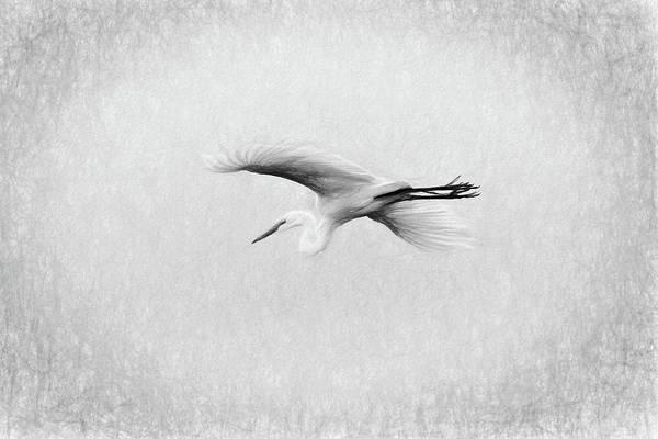Digital Art - Egret by Dawn J Benko