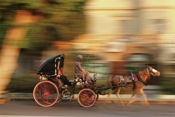Pulling Photograph - Egypt, Luxor, Horse Drawn Carriage by Frans Lemmens