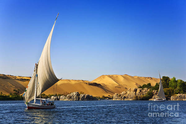 Wall Art - Photograph - Egypt. The Nile At Aswan by Witr