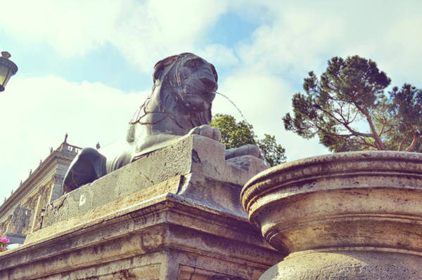 Photograph - Egyptian Basalt Lion by JAMART Photography