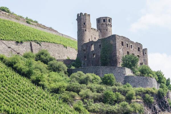 Ehrenfels Castle Art Print