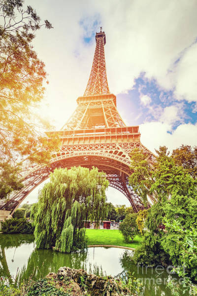 Wall Art - Photograph - Eiffel Tower Seen From The Park In Paris, France. by Michal Bednarek