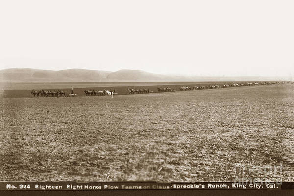 Photograph - Eighteen Eight Horse Plow Teams On The Claus Spreckle's Ranch, King City by California Views Archives Mr Pat Hathaway Archives