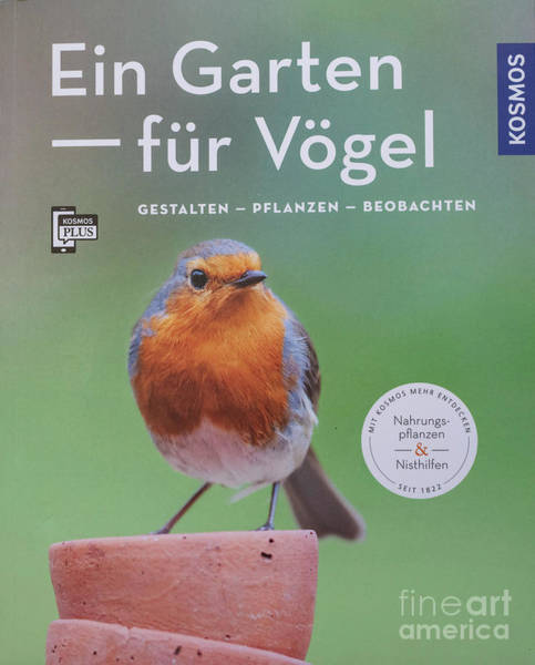 Photograph - Ein Garten Fur Vogel by Tim Gainey