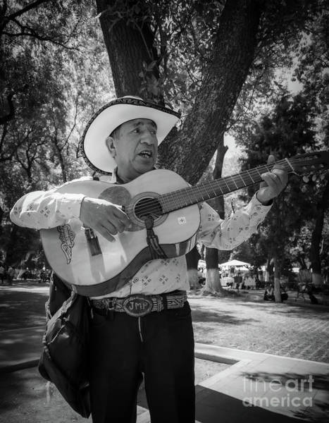 Photograph - El Trovador by Inge Johnsson